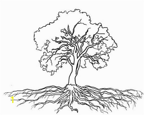 """Bare Tree Coloring Page Beautiful Tree with Roots Coloring Page """"µ'€µ²'Å'' Pinterest"""