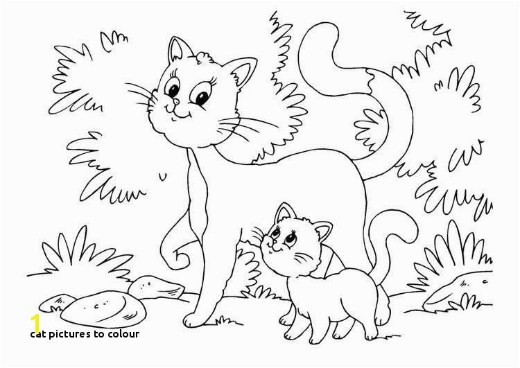 Cat to Colour Kitten Color Pages Elegant Kitty Cat Coloring Pages Unique Best Od