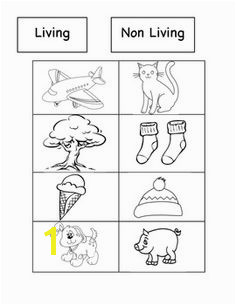 Living and Non Living Sort Cut and Paste Activity Teacher Created Resources Teaching
