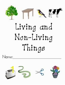 Living and Non Living Things Packet Teaching Ideas