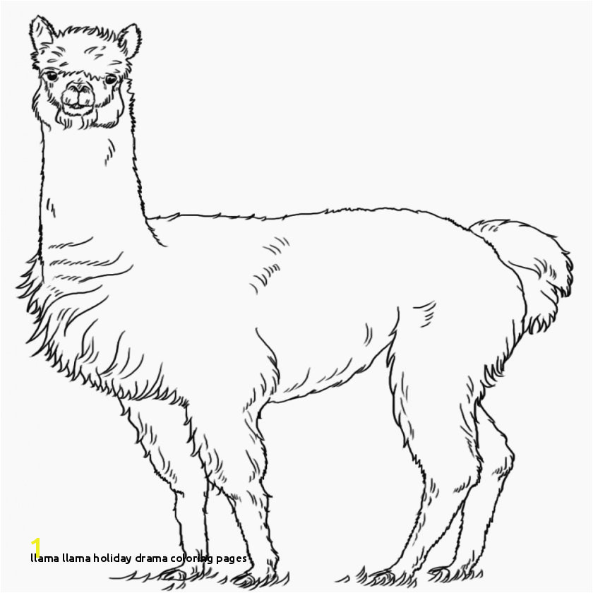 21 Llama Llama Holiday Drama Coloring Pages