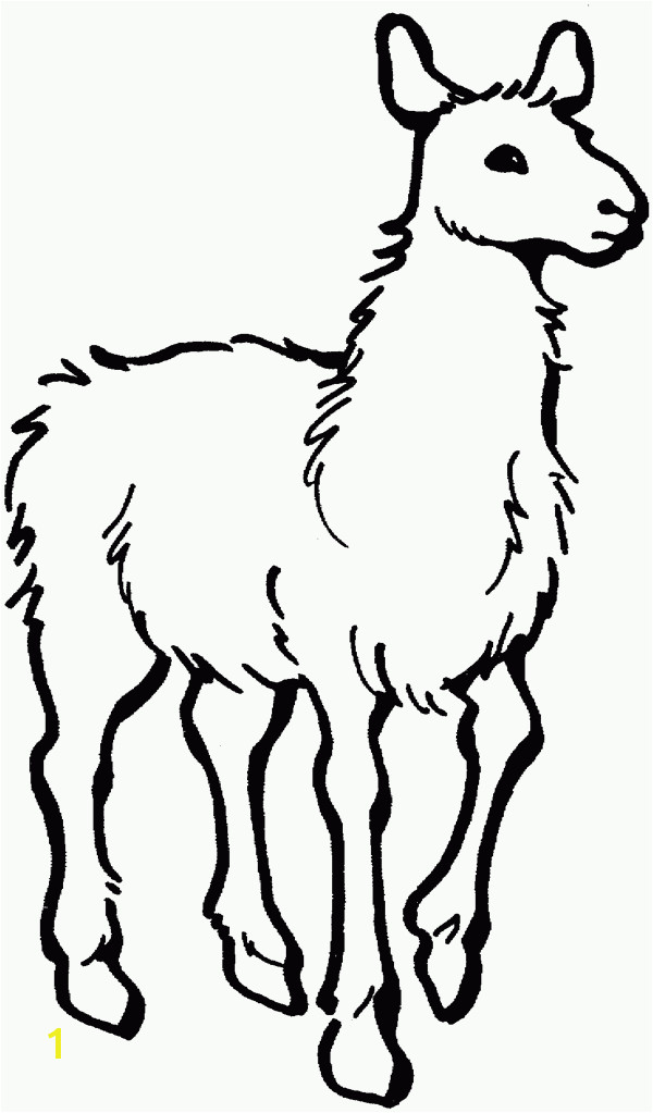 Llama Free Printable Coloring Pages