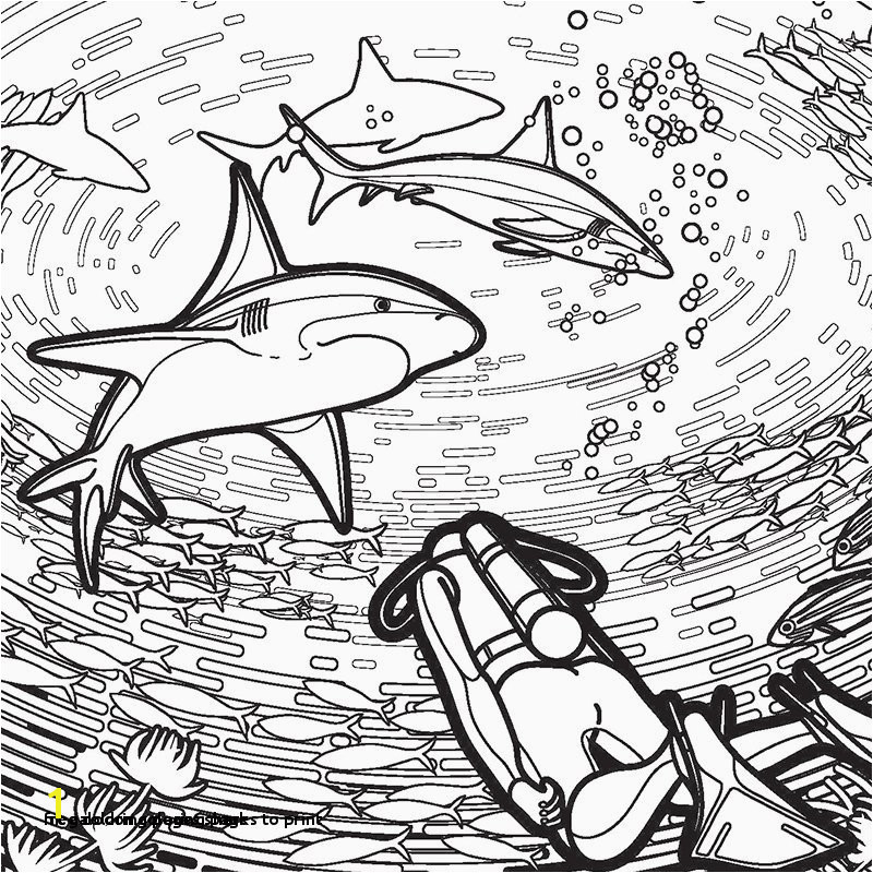 Free Coloring Pages Shark 30 Megalodon Coloring Pages to Print