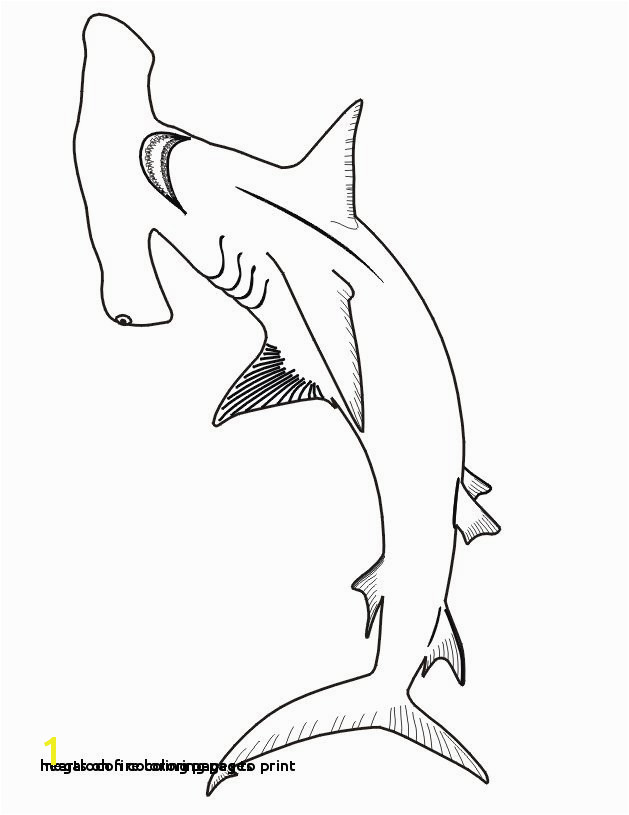 Hearts Fire Coloring Pages 30 Megalodon Coloring Pages to Print