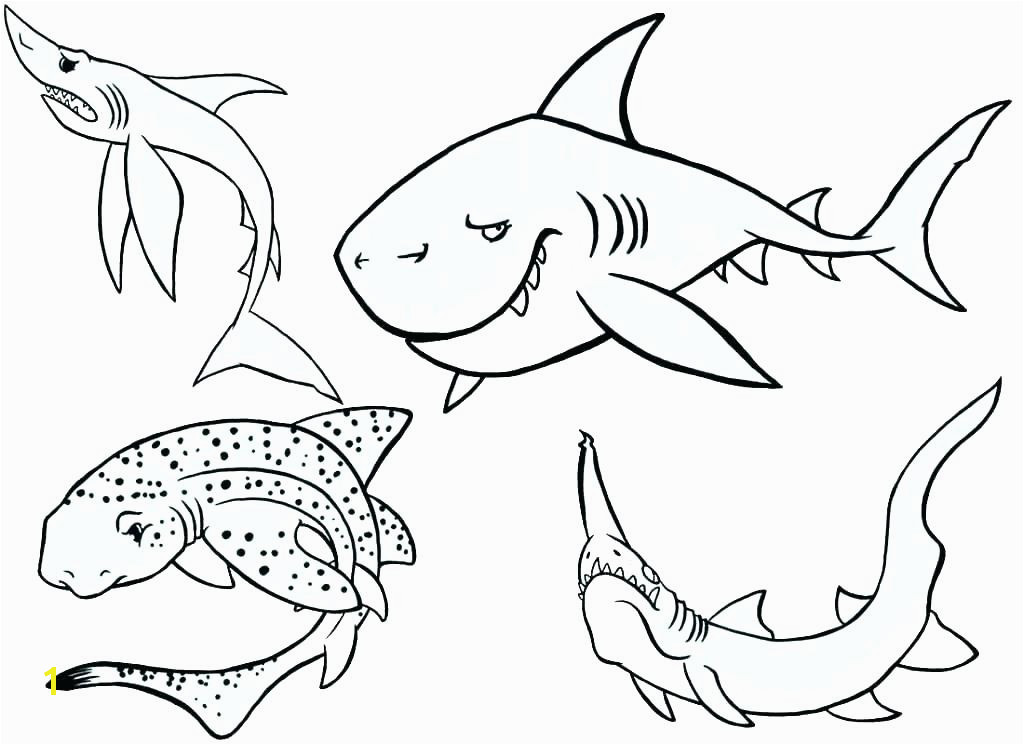 megalodon coloring pages coloring pages coloring pages coloring page coloring pages image of bull shark coloring megalodon coloring pages