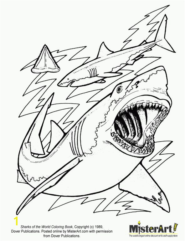 Megalodon Coloring Pages to Print Sharks Coloring Page Cartoon Pinterest