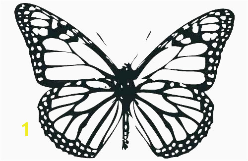 Monarch butterfly Coloring Page Beautiful Image Monarch butterfly Coloring Pages Lovely Coloring Page Monarch