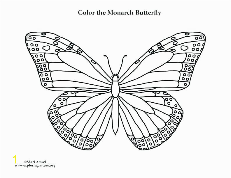 Monarch butterfly Coloring Pages Picture butterfly to Color Simple butterfly Coloring Pages butterfly Color