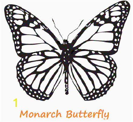Monarch butterfly Coloring Sheet New Monarch Coloring Page – Nlli Coloring