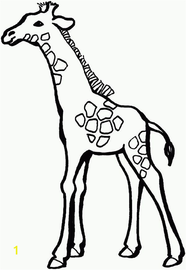 9a244f177fc7b119dd44f805fa57fb57 animal coloring pages coloring pages for kids