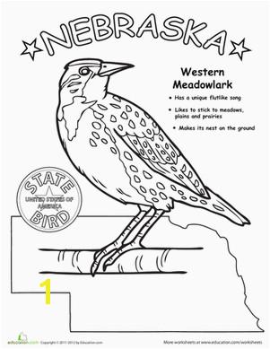 First Grade Animals Life Science Worksheets Nebraska State Bird