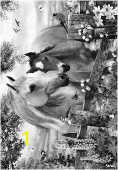 Coloring for adults Kleuren voor volwassenen Horse Coloring Pages Coloring Sheets Coloring Books