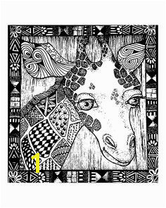 Free coloring page coloring adult africa giraffe head Free