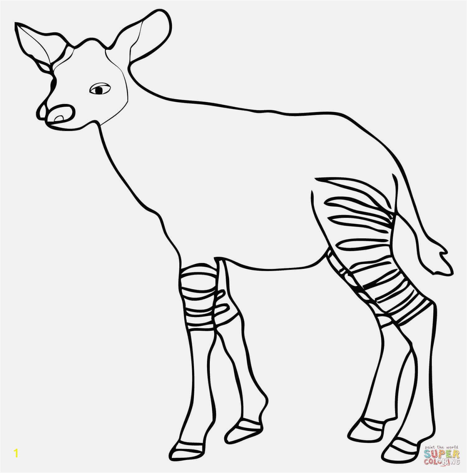 Ausmalbilder Waldtiere Beispielbilder Färben Ausmalbild Okapi Kalb