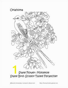 Oklahoma State Bird and Flower Coloring Page Search And Find Flower Coloring Pages Word