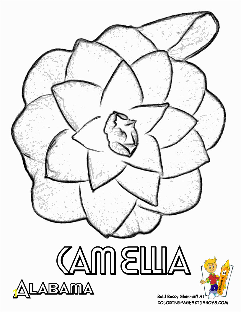 flower Page Printable Coloring Sheets Flower Coloring Sheets States Alabama Georgia Flower