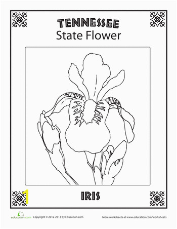 Oklahoma State Flower Coloring Page Oklahoma State Flower School social Stu S