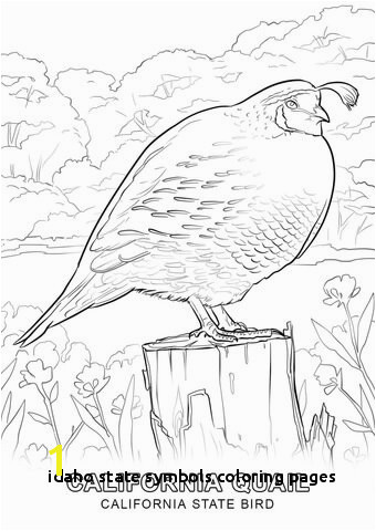 Idaho State Symbols Coloring Pages Nevada State Seal Coloring Page State Seal Coloring Page Coloring