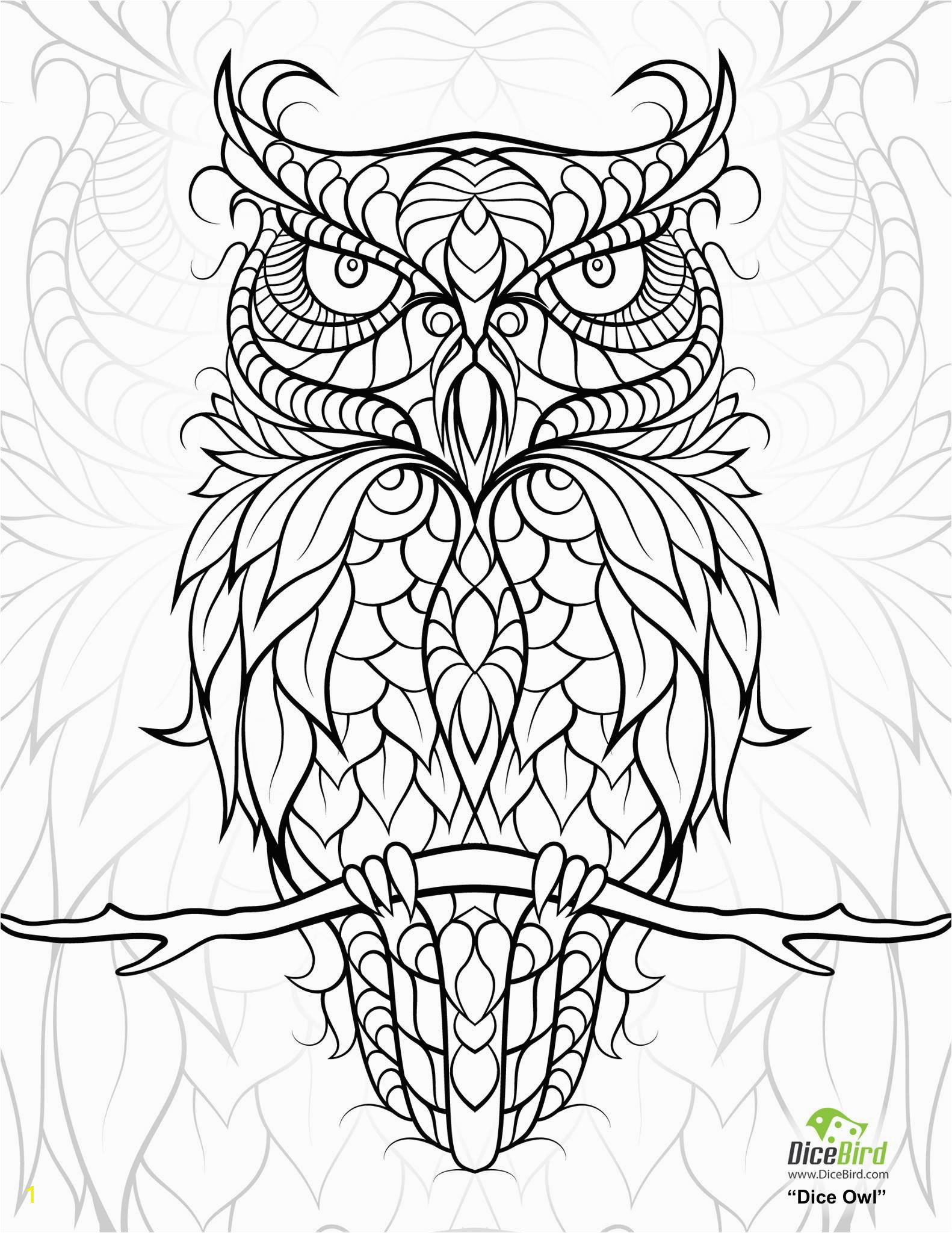 "iColor ""Owls"" 1582—2048 More Free Coloring Pages Printable Adult"
