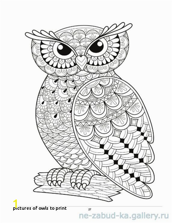 Owl Coloring Pages for Adults to Print Owls to Print 29 Owl Coloring Page Kids Coloring