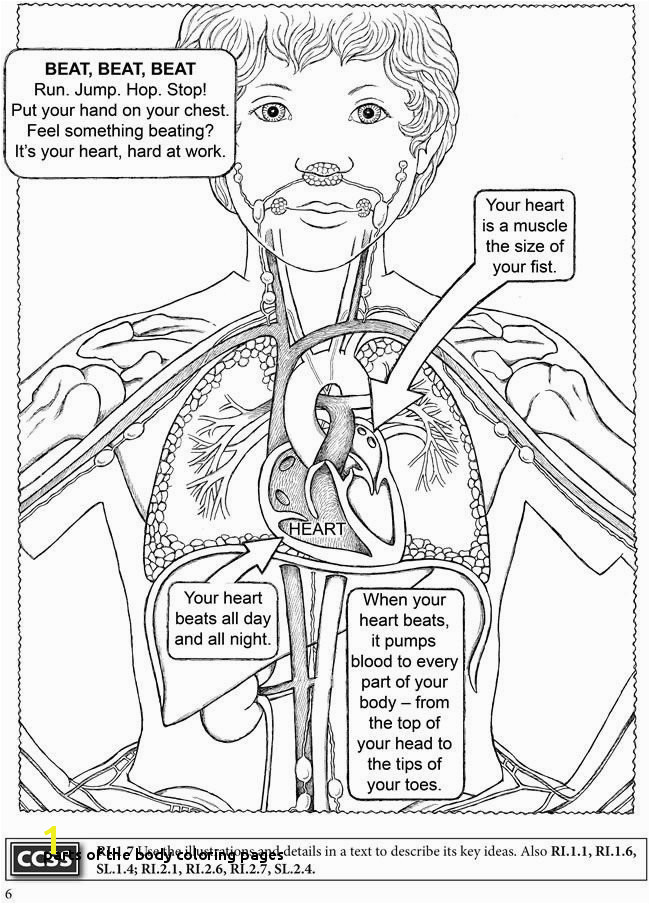 Places to Visit Parts the Body Coloring Pages Human Body Coloring Book Anatomy Pinterest Body Coloring Pages