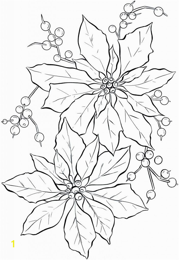 Poinsettia Line Art Christmas The Graphics Fairy