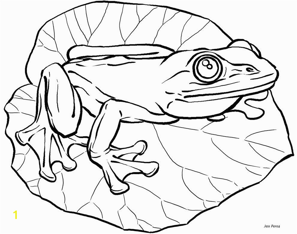 obama family coloring pages unique frog coloring pages fresh frog colouring 0d free coloring pages of