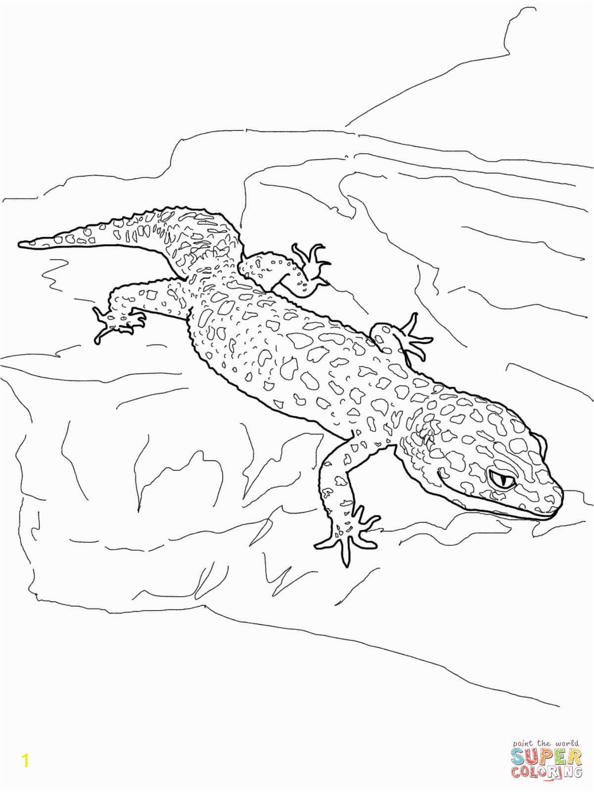 Alert Famous Newt Coloring Pages Leopard Gecko