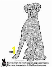 Image result for boxer dog face coloring page Dog Coloring Page Coloring Book Pages