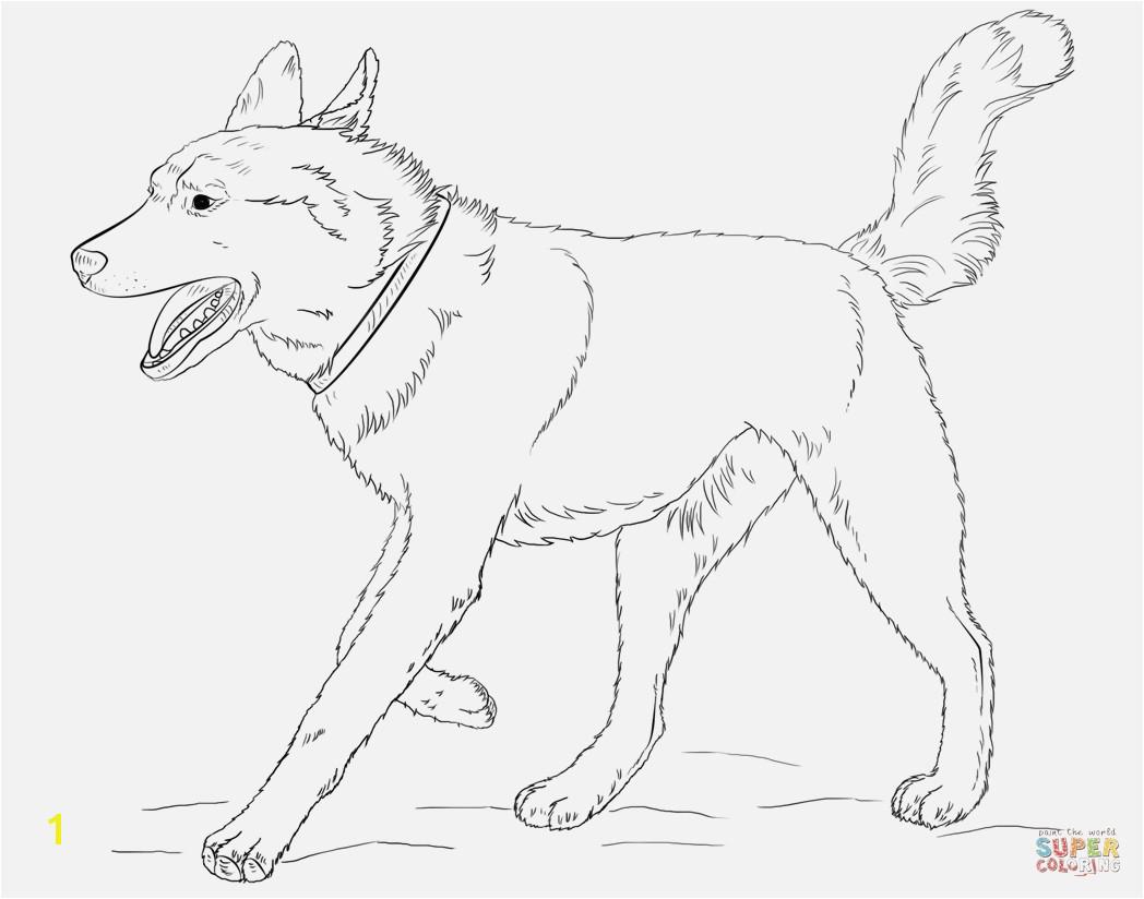 Ausmalbild Hund Boxer Verschiedene Bilder Färben Siberian Husky Dog Coloring Page