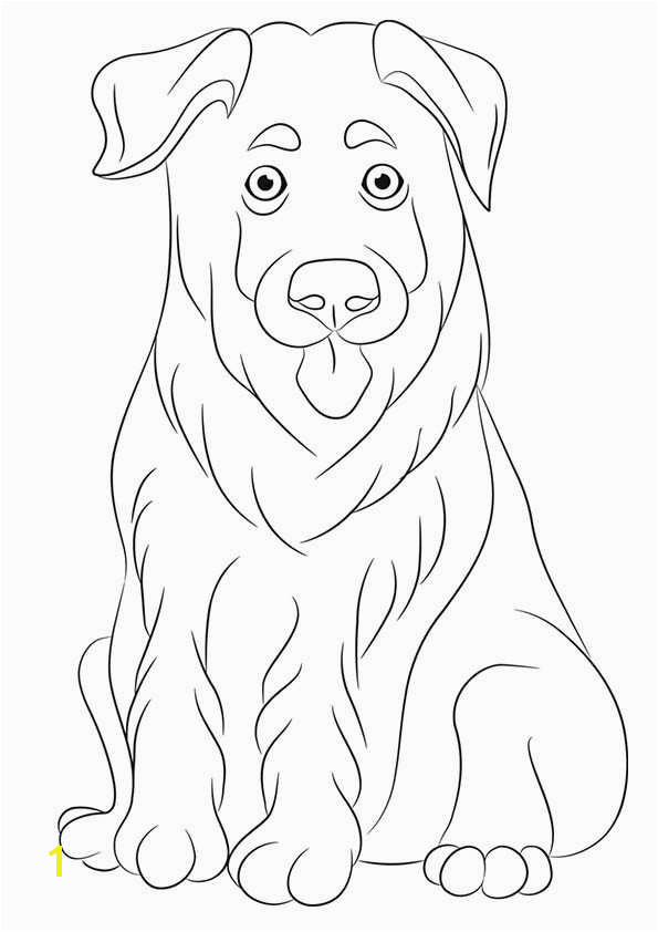 Biscuit the Puppy Coloring Pages Awesome Free Printable Dogs and Puppies Coloring Pages for Kids