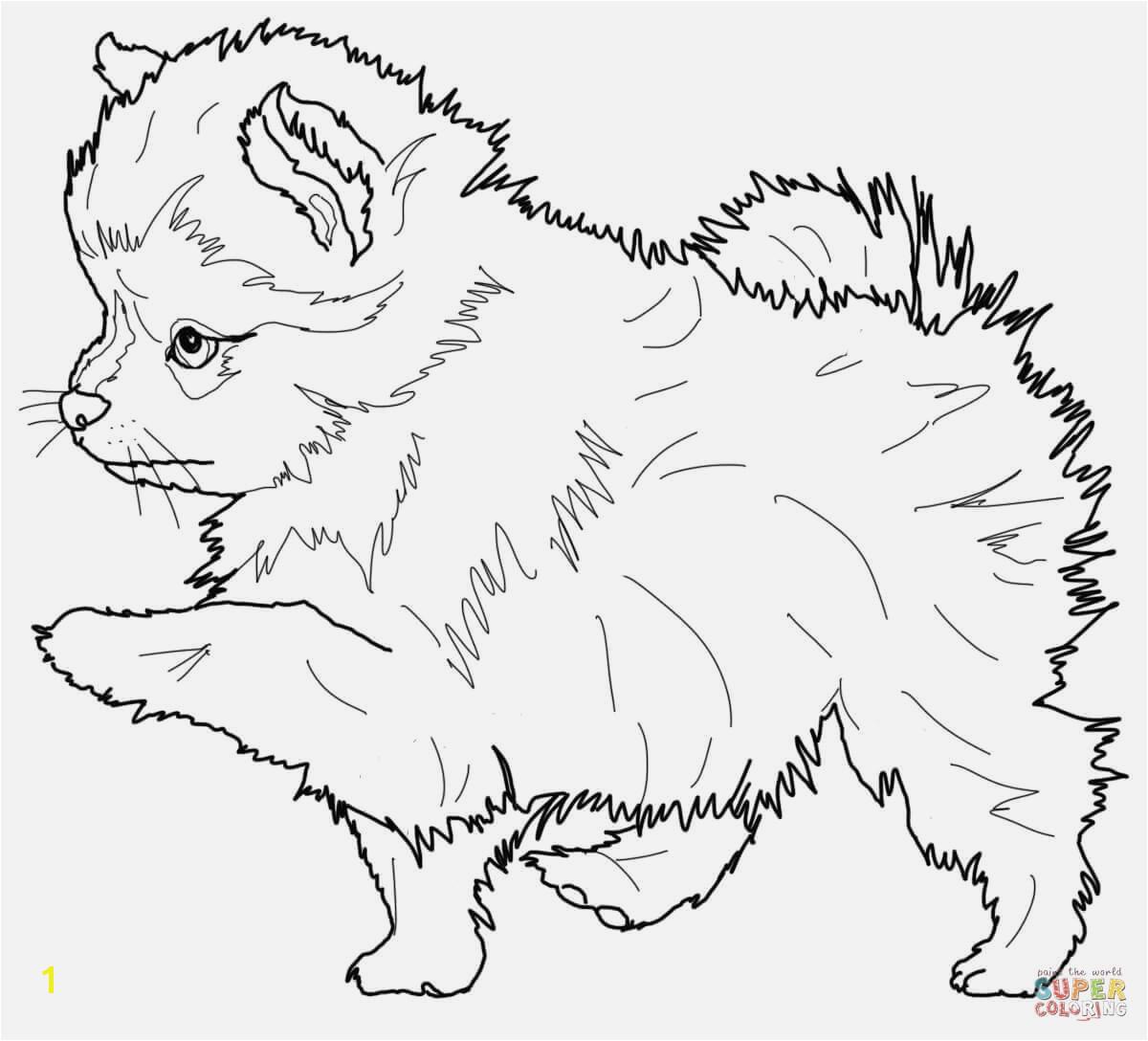 Printable Boxer Dog Coloring Pages Eine Sammlung Von Färbung Bilder Ausmalbild Hund Boxer