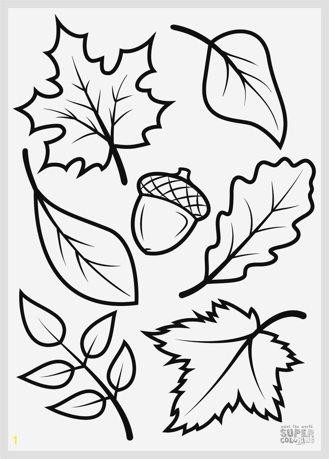 Printable Coloring Pages Squirrels Inspirational Engaging Fall 33