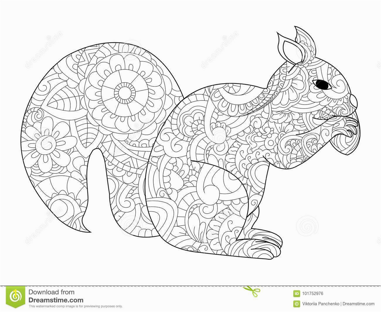 Squirrel with nut coloring raster for adults