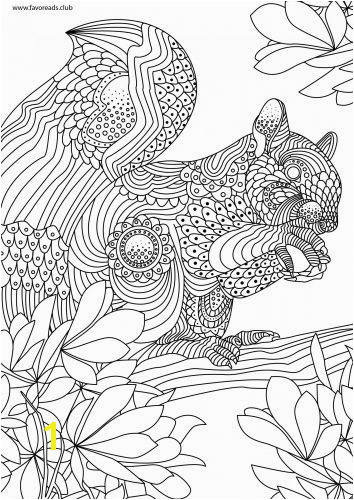 Squirrel printable adult coloring page More