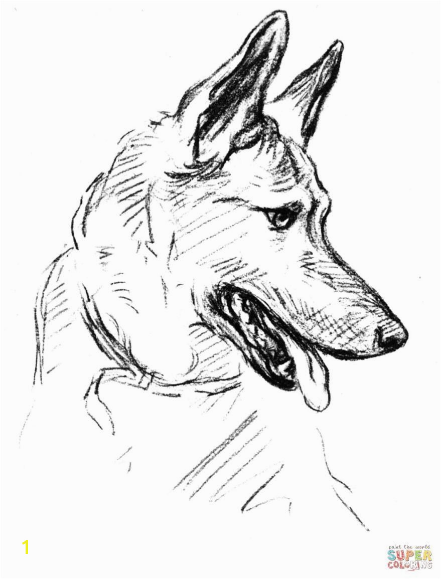 baby german shepherd coloring pages › mrengmengnk
