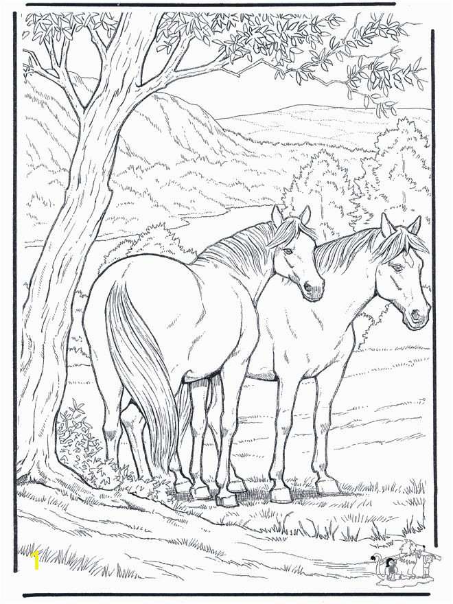 200 Best Horse Lovers Coloring Books Pinterest Beautiful Horse Coloring Pages