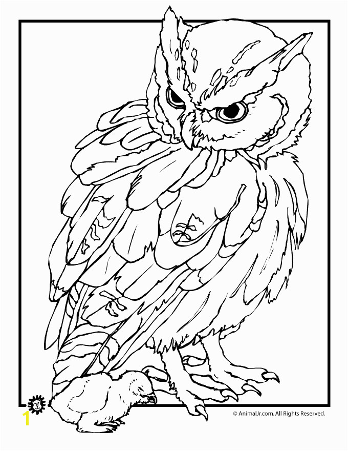 Real Baby Animal Coloring Pages Coloring Pages Animals Realistic 4