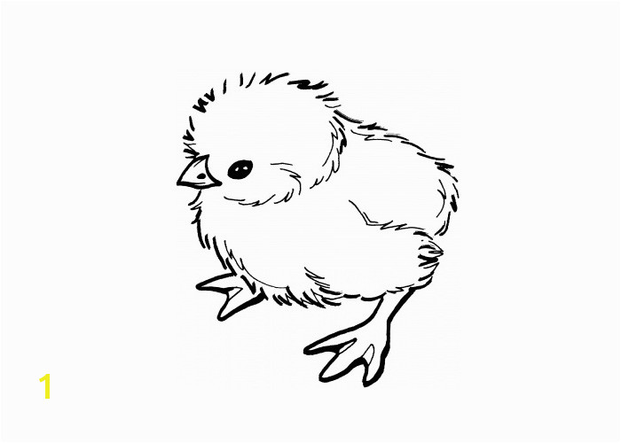 free realistic coloring pages of animals babies