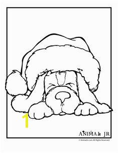 Christmas Puppy Coloring Page 1 Santa Coloring Pages Adult Coloring Pages Puppy Coloring Pages