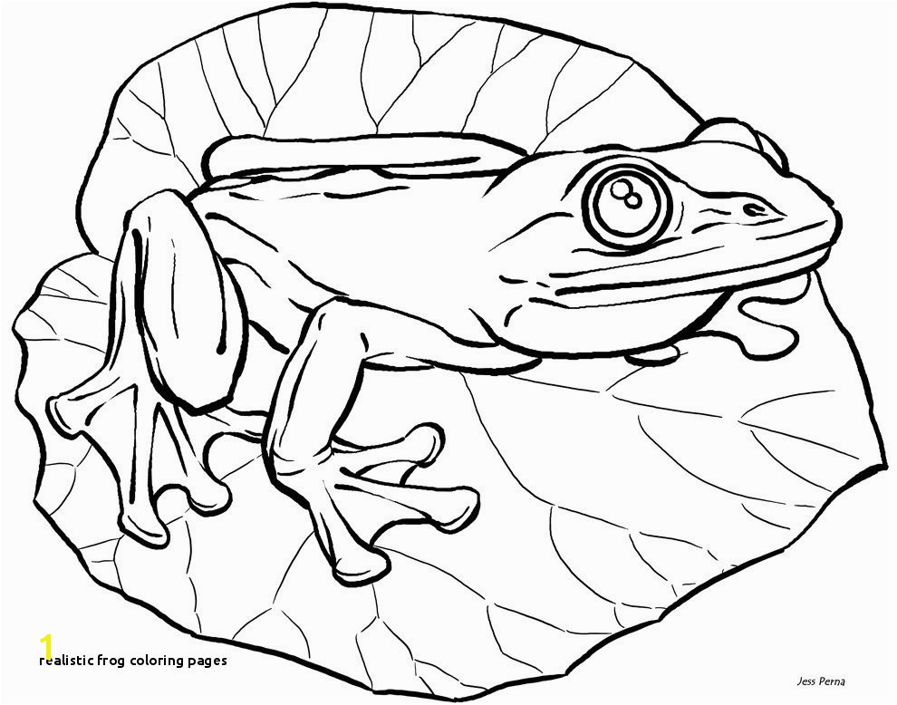 Realistic Coloring Pages Best Frog Coloring Pages Fresh Frog
