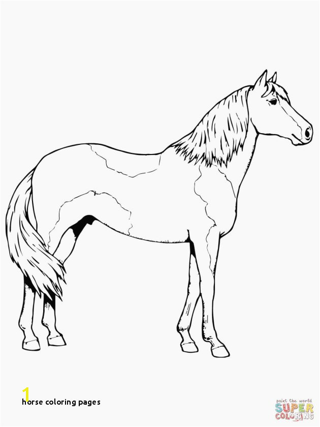 Horse Coloring Pages Best Free Coloring Pages Elegant Crayola Pages 0d Archives Se