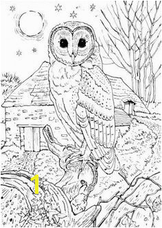 Realistic Owl in a full moon night coloring page for grown ups Owl Coloring Pages