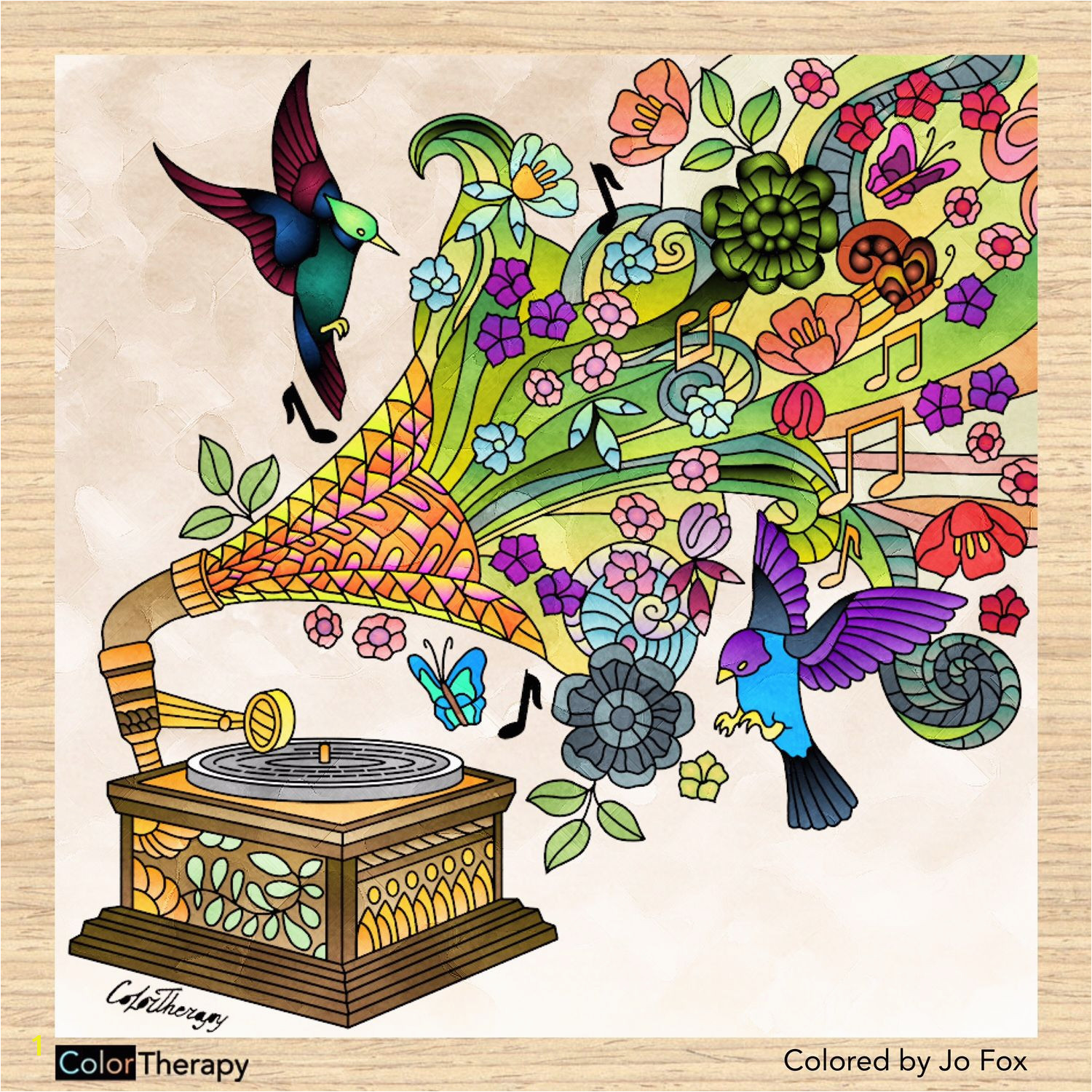 Record Coloring Page Nature From A Record Player Jo S Coloring Book