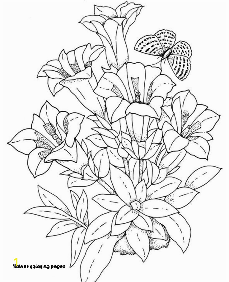 Coloring Pages Roses Simple Flower Coloring Pages Lovely Best Coloring Page Adult Od Kids