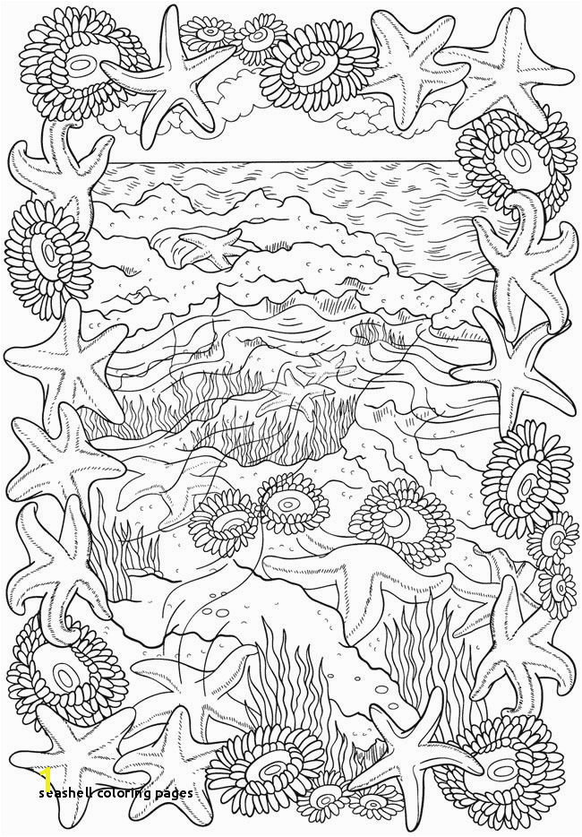 Seashell Coloring Pages Bliss Seashore Coloring Book Your Passport to Calm
