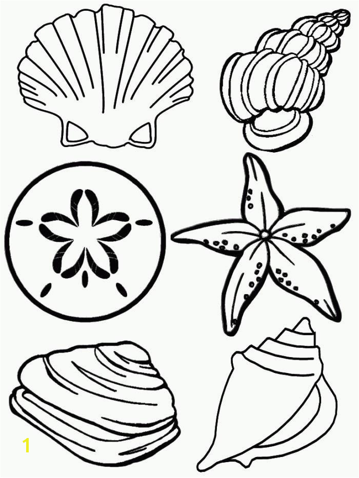 22 Luxury Shell Coloring Pages Ideas