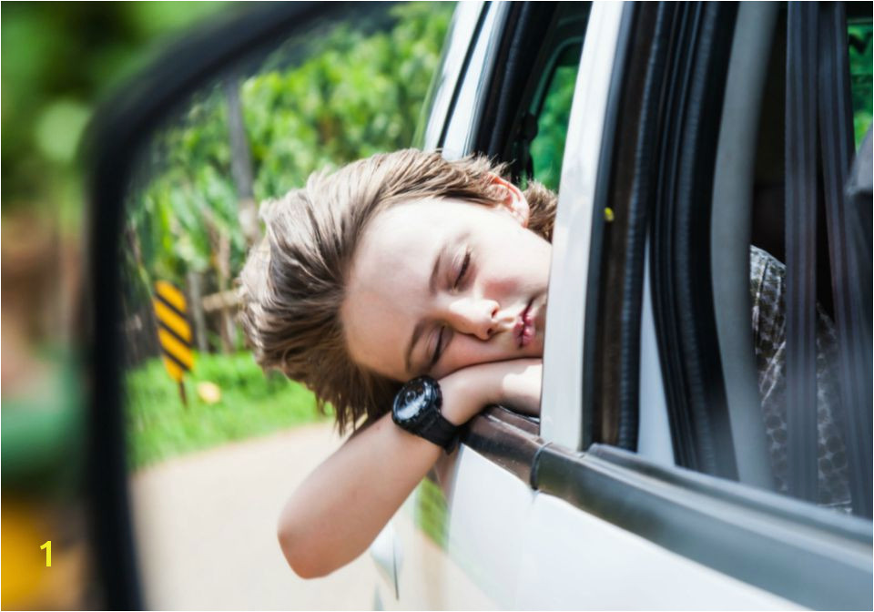 child resting with head out the car window