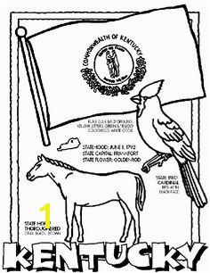 Kentucky Unit Study State Symbol Coloring Page by Crayola Print or color online Preschool