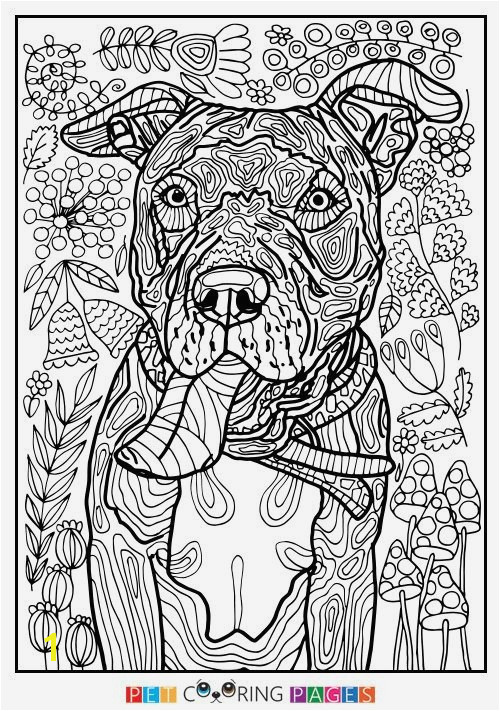 Pages Smoky Mountain Coloring Related Post